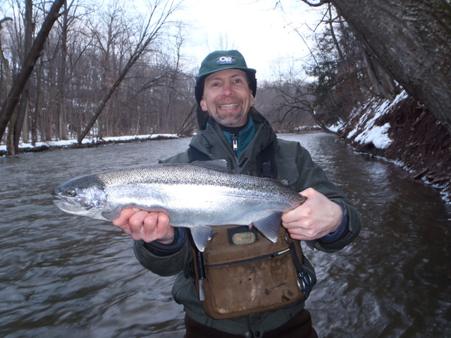 Ron smiles as he hold up a prime Oak Orchard steelhead.  The Oak Orchard is a fly fisherman's dream -stream.  It's wide, easy to wade giving fly casters lot's of back-cast room, and it'has lot's of fish!