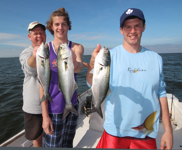 Bluefish often feed in the same waters as Spanish Mackrel and also hit spoons really well.
