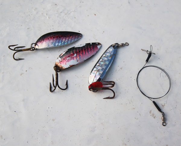 From left to right; Blue Fox spoons, Luhr Jensen spoon and of course, Terminator Titanium wire leaders, a must when targetting Spanish Mackerel on light line.
