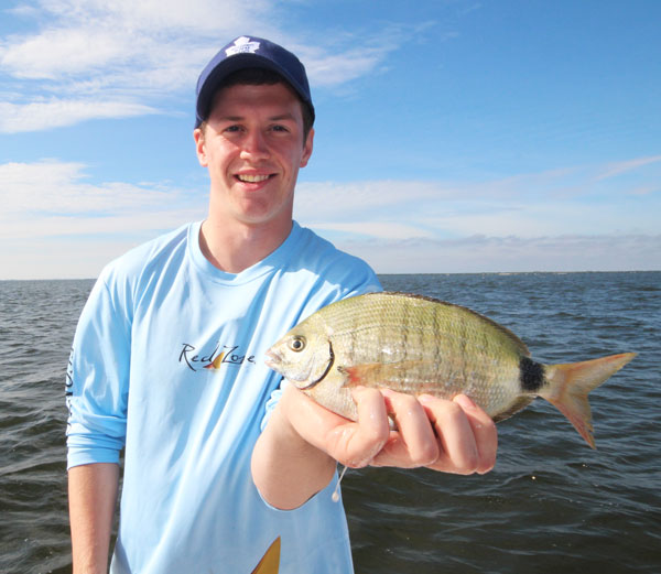 Pinfish come in different sizes.  This Spottail Pinfish is like catching a big freshwater panfish...fun to catch and tasty!