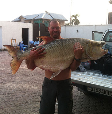 In 2012 Christo Human caught a giant 45 kg (99 lb), Tigerfish fishing the Congo River, Africa. As far as confirmed giant Tigerfish catches, this is the third Goliath Tigerfish in the 45 kg class to be caught in recent times.