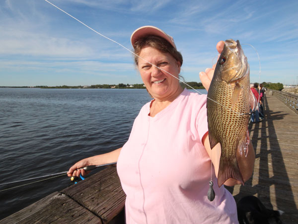 My wife Barbara holds up one of the mangrove snapper we caught while checking the fishing on a couple of Florida fishing piers.