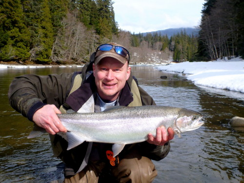 Dennis Therrien with another beautiful Kalum River Steelhead landed March 13th 2014.