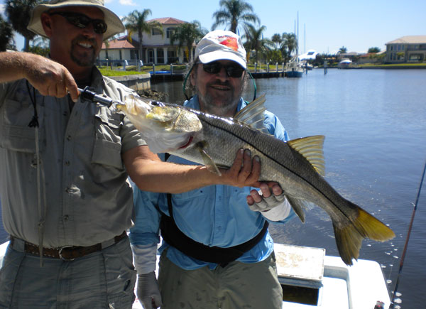 Big snook have a hard time resisting a large live shrimp, or a lively baitfish hooked on a small hook and free-lines under cover where snook are holding.