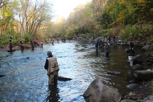 downstream_view