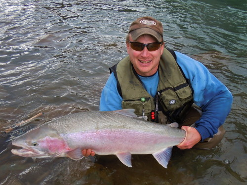 "Hi Noel, I thought your readers would like to see this photo of a Zymoetz (Copper) River Steelhead. This may be the largest Steelhead I have ever landed.  It was quite the ""tug-of-war"", my small Gamakatsu hook and split rings were stressed to the max. Your favourite son-in-law, Dennis Therrien."