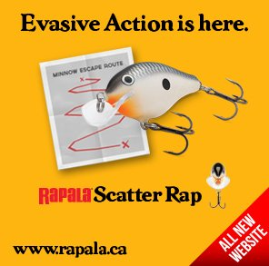 Rapala Scatter Rap