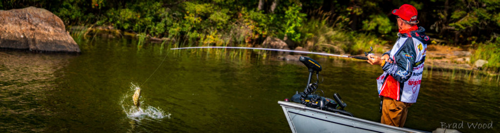 One of Canada's top fighting warm-water fish!