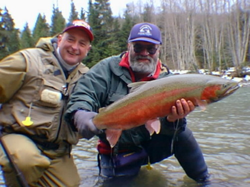 The photo shows me with a male Steelhead landed a few years ago 2008. The  other gentleman is Italo Labignan of Canadian Sportfishing  www.canadian-sportfishing.com  Over the years Italo and I have shot over 11 television fishing shows in northwest BC for both Steelhead and Salmon.  We were doing a shoot on the Kalum River in the spring.  The wild Steelhead at this time come in all colours.  The males usually are darker than the females. Some fish have been in the river all winter and some have just come in.