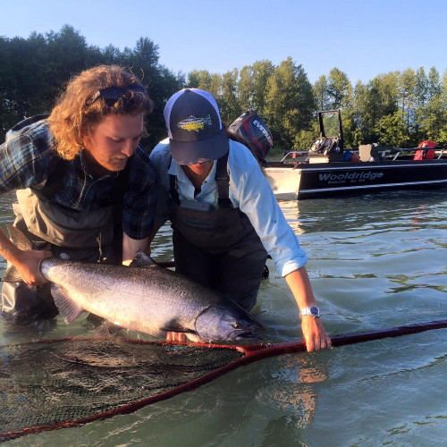 Some excellent Chinook (King) Salmon fishing on the Skeena River. April Vokey teamed up with some of the great people at Skeena Spey where Jean-Simone landed this fly-caught Chinook.