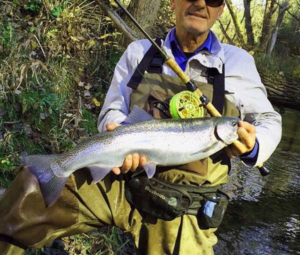 Winter Steelhead action.