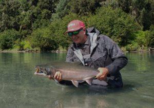 BC Coho Salmon.