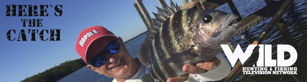 """Here's the Catch!"""" Series on WILD TV, """"Saltwater Sheepshead Action."""" 6:30am, Tues., Sept.29, 2021."""