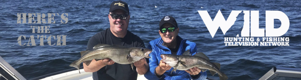 """Here's the Catch!"""" Series on WILD TV, """"Atlantic Cod Action."""" 6:30am, Tues., June 22 2021."""